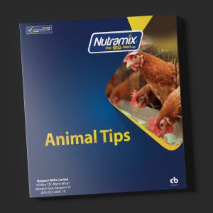 Animal Tips